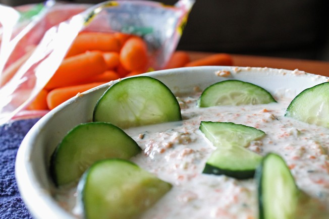 Carrot Cucumber and Nut Yogurt Dip 5--010713