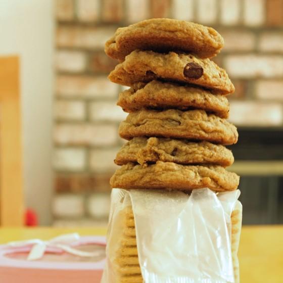 Graham Cracker Chocolate Chip Cookies 1--082013