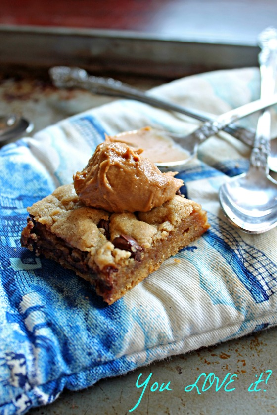 Best Chewy Biscoff Chocolate Chip Blondies 23--091713