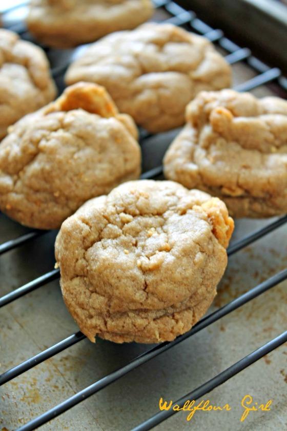 Brown Sugar Cookie Butter Graham Cracker Cookies 11--100813