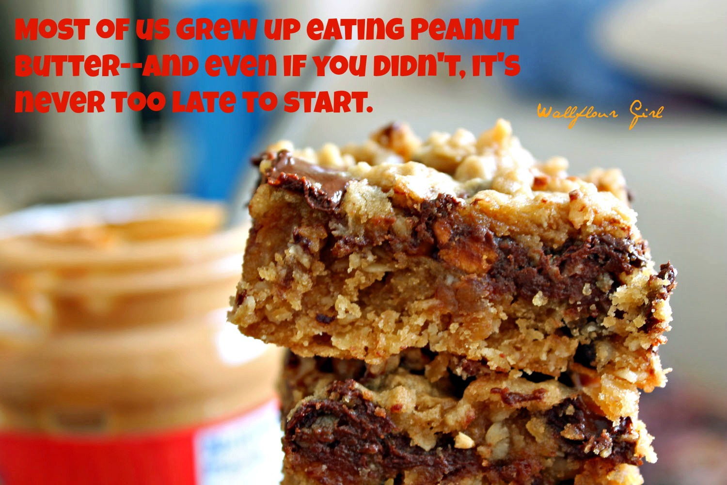 Peanut Butter Lovers' Chocolate Oat Squares 23--101313