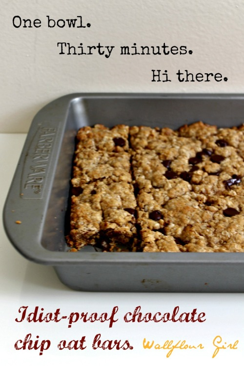 Idiot-Proof Healthy Chocolate Chip Oat Bars 19--012214